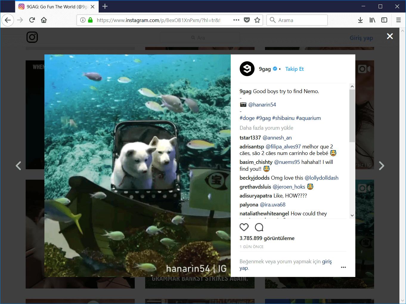bilgisayardan instagram video indirme
